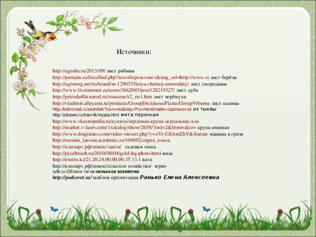 Источники : http://agesha.ru/2013/09/ лист рябины http://pumpin.ru/foto/find.php?text=береза+лист&img_url=http://www.st лист берёзы http://agrotorg.net/ru/board/m-129037/listya-chernoj-smorodiny/ лист смородины http://www.liveinternet.ru/users/3662045/post128219327/ лист дуба http://priroda40a.narod.ru/rosaceae/r2_ris1.htm лист черёмухи http://vladimir.alleyann.ru/products/GroupDeciduousPlants/GroupViburnu лист калины http://bobroved.ru/sed/diet/?con=res&req=Pro+Handmade+сделано+св из тыквы http://zdrawo.ru/travnik/myata.html мята перечная http://www.vkusnopedia.ru/купить/перловая-крупа-агроальянс-кла http://market.v-lazer.com/1/catalog/show/2658/?ord=2&from=&to= крупа ячневая http://www.dragtimes.com/video-viewer.php?v=xVr-GSAmZhY&feature машина в грязи http://russian_latvian.academic.ru/104692/серая_ольха http://клипарт.рф/поиск/танки/ садовая тачка http://pixelbrush.ru/2010/08/04/gold-hq-photo.html весы http://enstru.kz/21.20.24.00.00.00.35.13.1 вата http://клипарт.рф/поиск/сельское хозяйство/ зерно rylik.ru › Облако тегов › сельское  хозяйство http://pedsovet.su/ шаблон презентации Ранько Елена Алексеевна