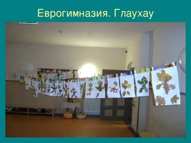 Еврогимназия. Глаухау