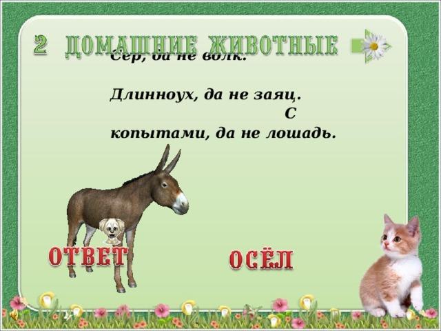 Сер, да не волк. Длинноух, да не заяц. С копытами, да не лошадь.  3