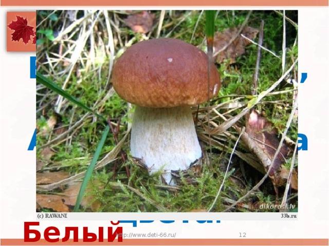 Стоит Лушка-  Белая рубашка,  А шляпа надета  Шоколадного цвета . Белый гриб http://www.deti-66.ru/