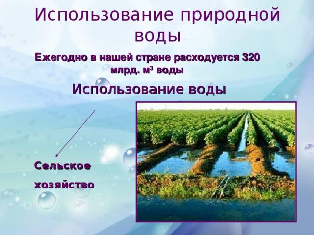 Использование природной воды Ежегодно в нашей стране расходуется 320 млрд. м 3 воды Использование воды Бытовые  нужды Сельское  хозяйство Водный  транспорт