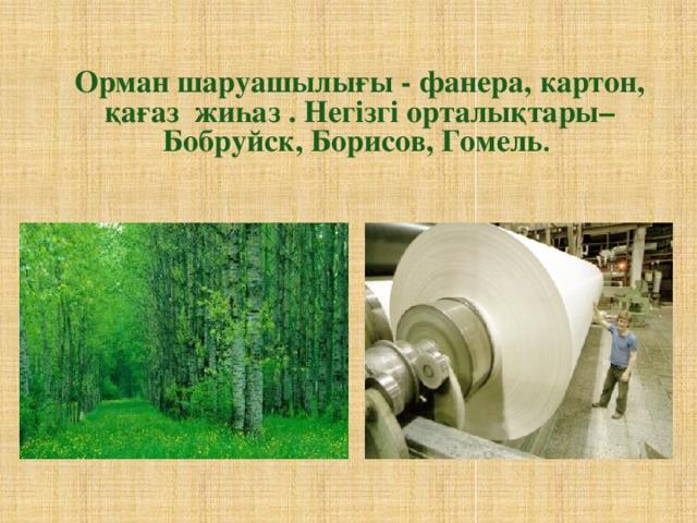 Орман шаруашылығы - фанера, картон, қағаз жиһаз . Негізгі орталықтары– Бобруйск, Борисов, Гомель .