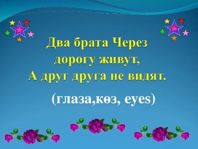 (глаза,көз, eyes)