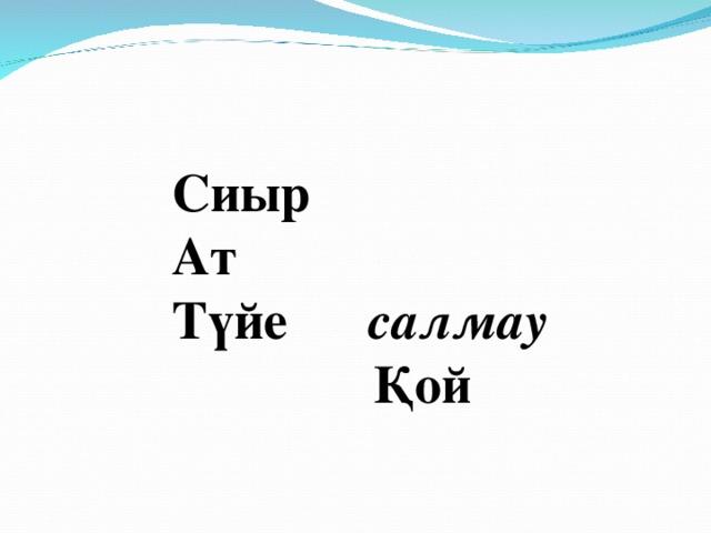 Сиыр Ат Түйе салмау  Қой
