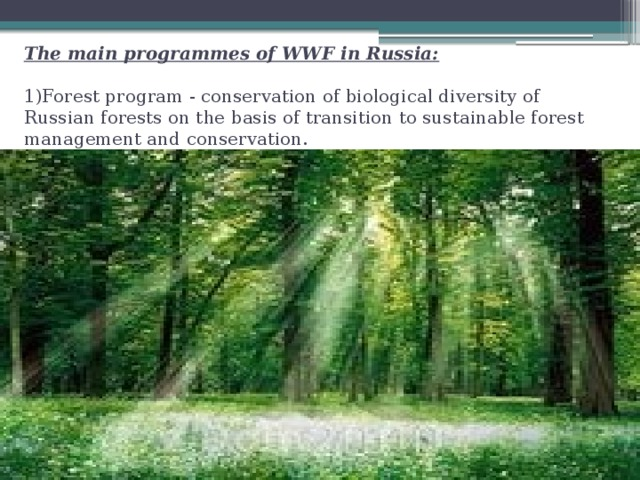 The main programmes of WWF in Russia:   1)Forest program - conservation of biological diversity of Russian forests on the basis of transition to sustainable forest management and conservation.