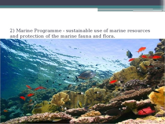 2) Marine Programme - sustainable use of marine resources and protection of the marine fauna and flora.