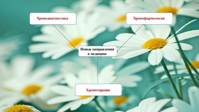 Хронодиагностика Хронофармология Новые направления в медицине Хронотерапия