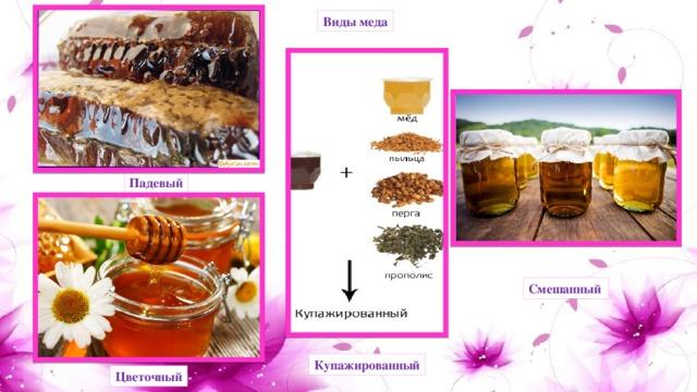 Виды меда Падевый Смешанный Купажированный Цветочный