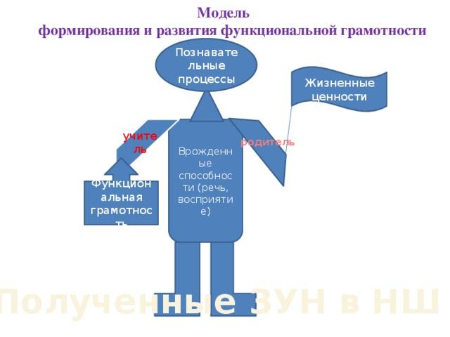 Модель  формирования и развития функциональной грамотности Познавательные процессы Жизненные ценности Врожденные способности (речь, восприятие) учитель родитель Функциональная грамотность Полученные ЗУН в НШ
