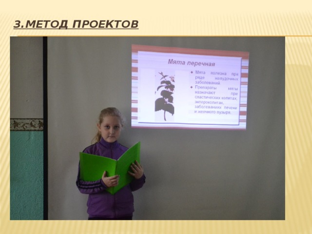 3.Метод проектов