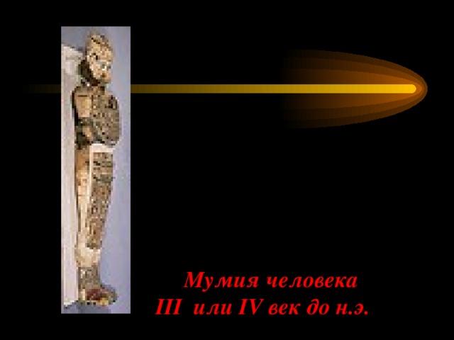 Мумия человека  III или IV век до н.э.