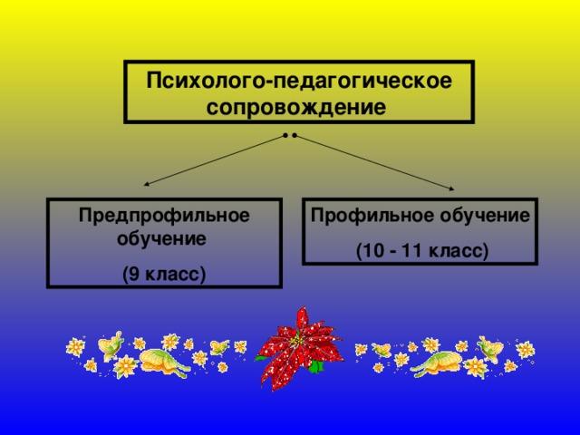Психолого-педагогическое сопровождение  Предпрофильное обучение (9 класс) Профильное обучение  (10 - 11 класс)