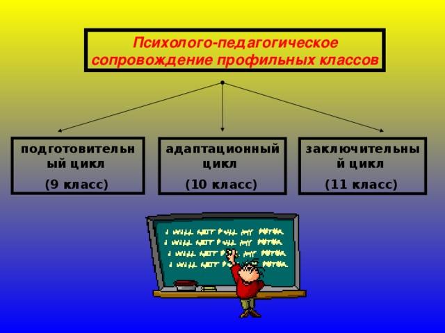 Психолого-педагогическое сопровождение профильных классов  подготовительный цикл (9 класс)  заключительный цикл (11 класс)  адаптационный цикл (10 класс)
