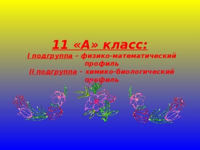 11 «А» класс:   I подгруппа – физико-математический профиль  II подгруппа – химико-биологический профиль