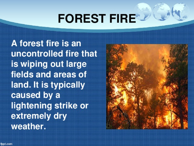 FOREST FIRE A forest fire is an uncontrolled fire that is wiping out large fields and areas of land. It is typically caused by a lightening strike or extremely dry weather.