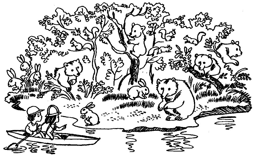 раскраска кто где живет дикие животные что