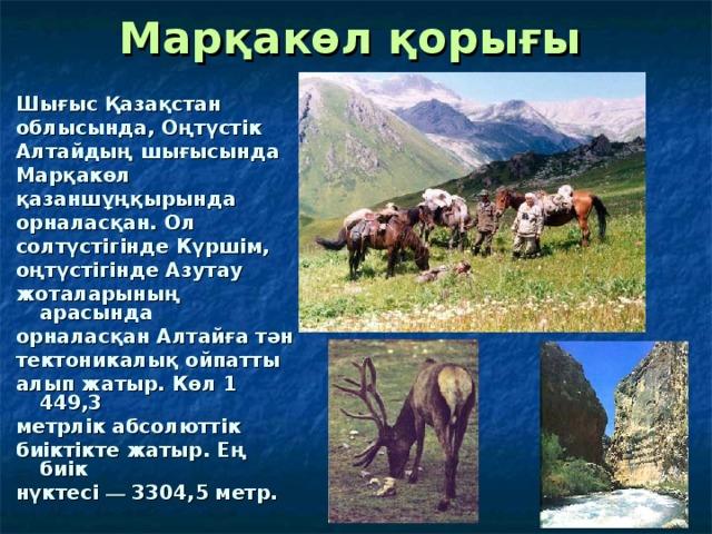 Марқакөл қорығы  Шығыс Қазақстан облысында, Оңтүстік Алтайдың шығысында Марқакөл қазаншұңқырында орналасқан. Ол солтүстігінде Күршім, оңтүстігінде Азутау жоталарының арасында орналасқан Алтайға тән тектоникалық ойпатты алып жатыр. Көл 1 449,3 метрлік абсолюттік биіктікте жатыр. Ең биік нүктесі — 3304,5 метр.