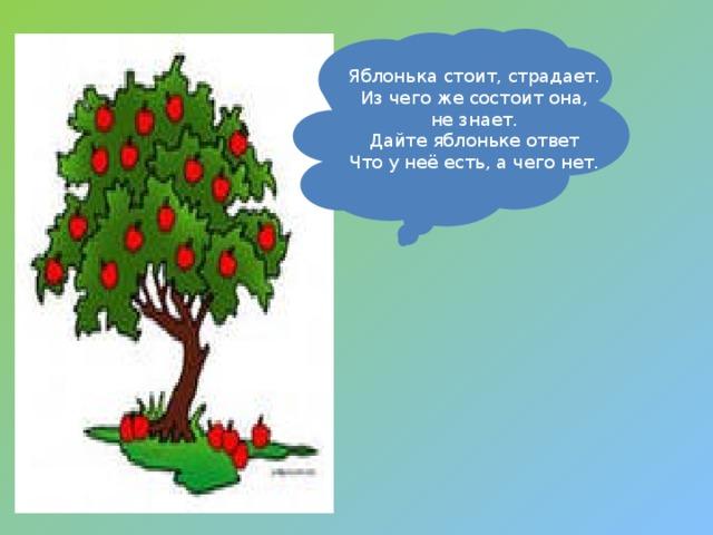 Яблонька стоит, страдает. Из чего же состоит она, не знает. Дайте яблоньке ответ Что у неё есть, а чего нет.