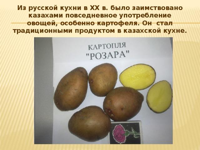 Из русской кухни в XX в. было заимствовано казахами повседневное употребление овощей, особенно картофеля. Он стал традиционными продуктом в казахской кухне.
