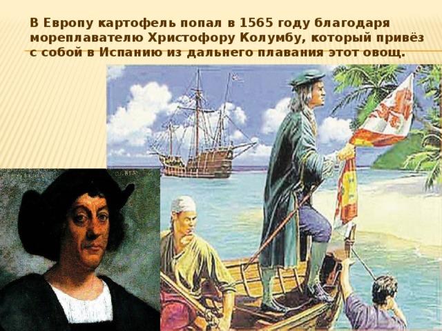В Европу картофель попал в 1565 году благодаря мореплавателю Христофору Колумбу, который привёз с собой в Испанию из дальнего плавания этот овощ.