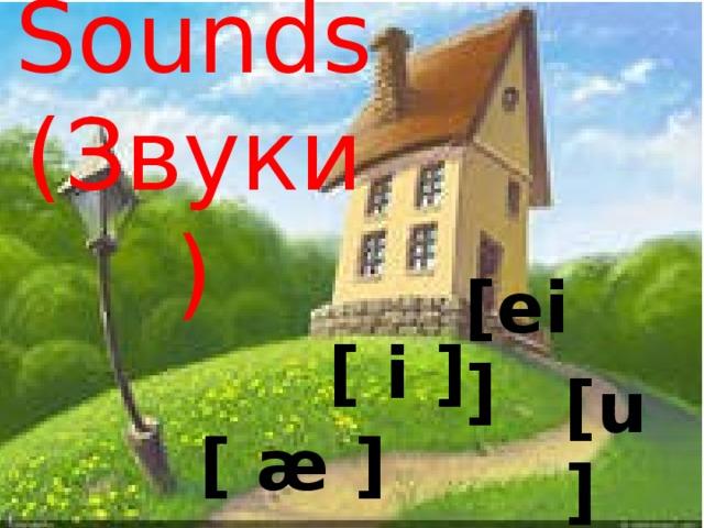 Sounds  (Звуки) [ei] [ i ]  [u] [ æ ]