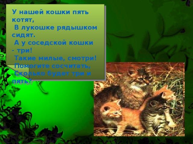 У нашей кошки пять котят,  В лукошке рядышком сидят.  А у соседской кошки - три!  Такие милые, смотри!  Помогите сосчитать,  Сколько будет три и пять?
