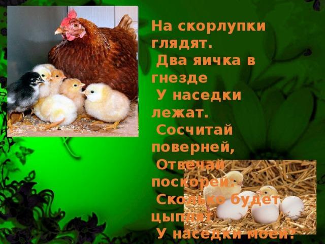 На скорлупки глядят.  Два яичка в гнезде  У наседки лежат.  Сосчитай поверней,  Отвечай поскорей:  Сколько будет цыплят  У наседки моей? Три цыпленка стоят