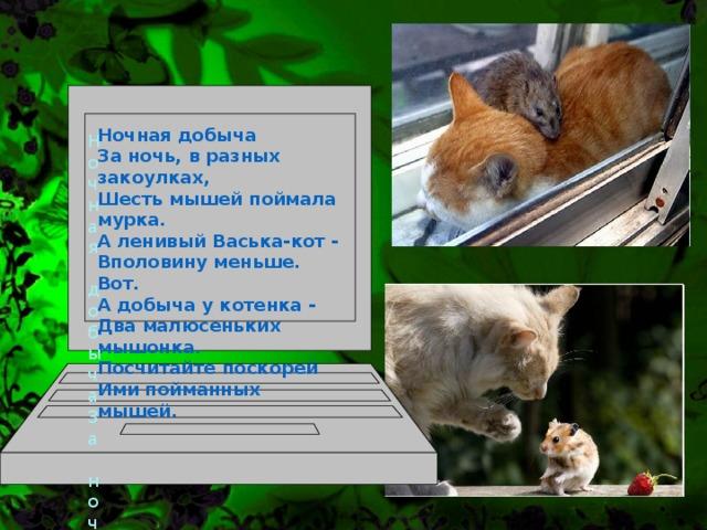 Ночная добыча За ночь, в разных закоулках, Шесть мышей поймала мурка. А ленивый Васька-кот - Вполовину меньше. Вот. А добыча у котенка - Два малюсеньких мышонка. Посчитайте поскорей Ими пойманных мышей.  Ночная добыча За ночь, в разных закоулках, Шесть мышей поймала мурка. А ленивый Васька-кот - Вполовину меньше. Вот. А добыча у котенка - Два малюсеньких мышонка. Посчитайте поскорей Ими пойманных мышей.
