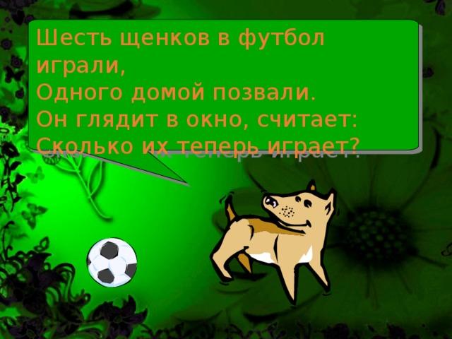 Шесть щенков в футбол играли,  Одного домой позвали.  Он глядит в окно, считает: Сколько их теперь играет?