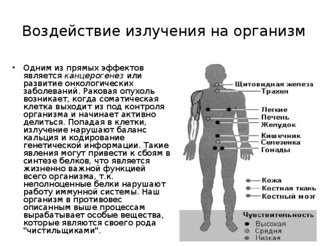 Воздействие излучения на организм