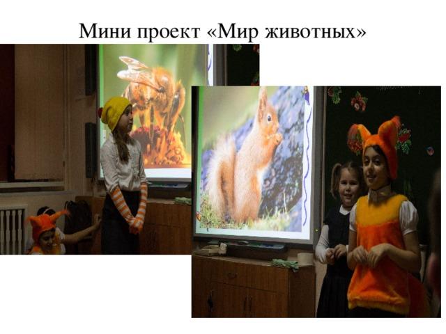 Мини проект «Мир животных»