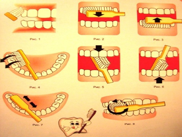 Памятка «Как правильно чистить зубы»