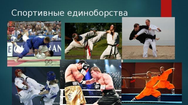 Спортивные единоборства