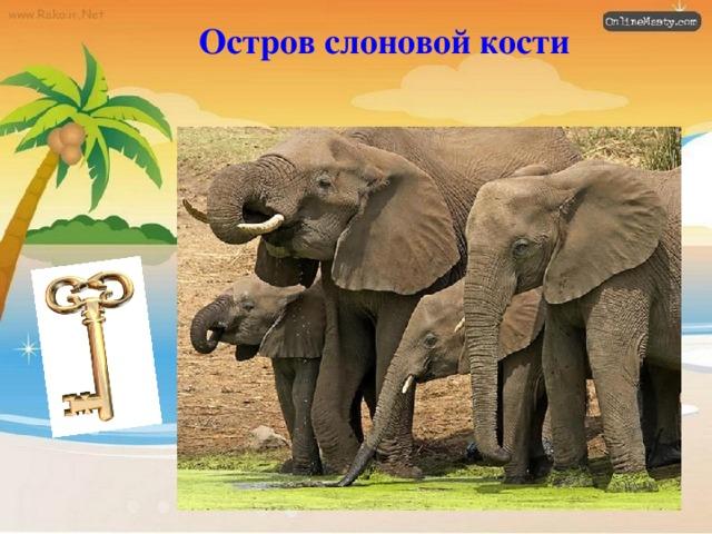 Остров слоновой кости