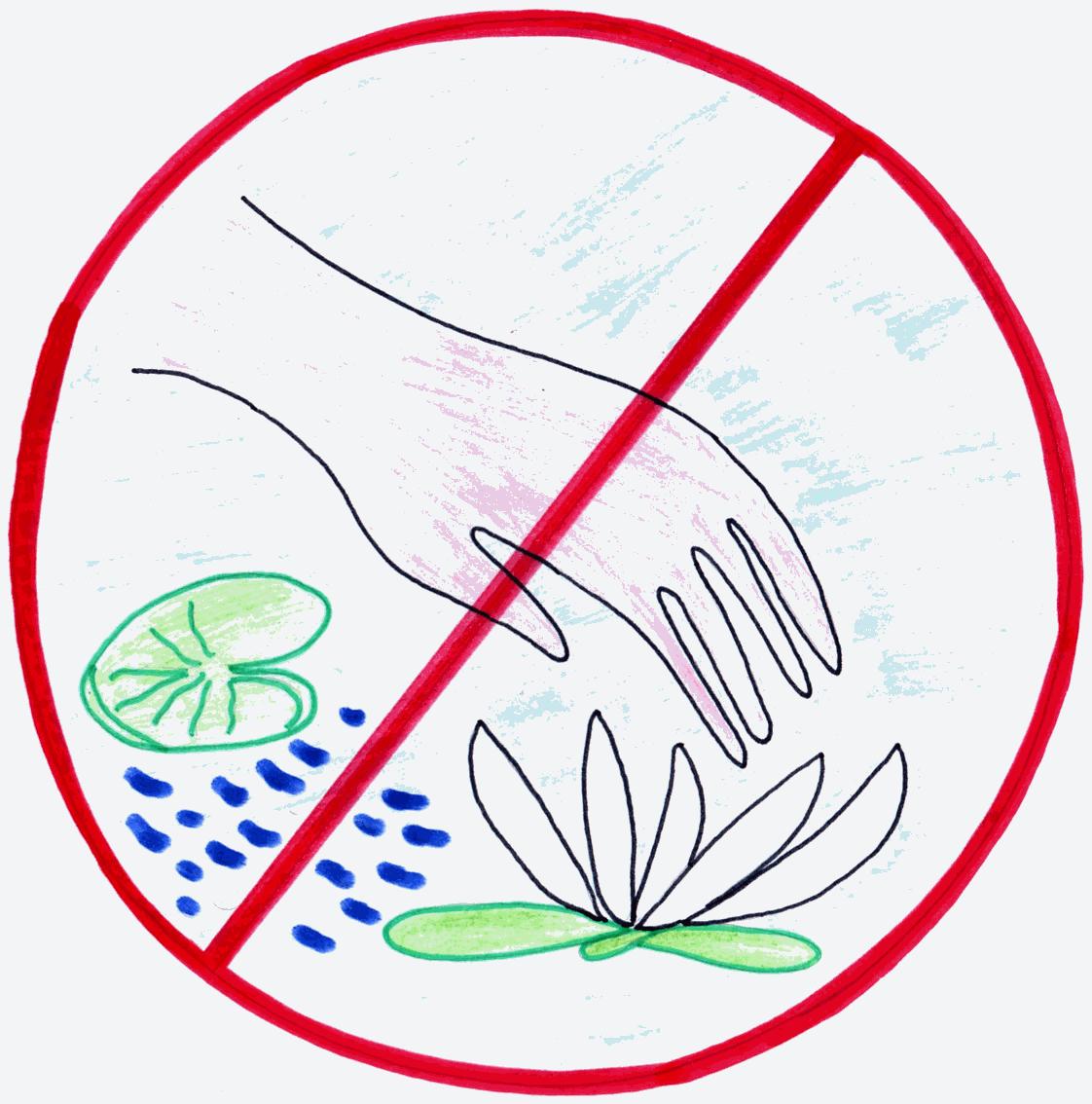 картинки разрешающие знаки по охране воды заходите наш сайт