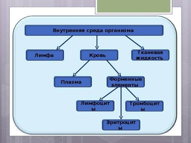 Внутренняя среда организма Кровь Тканевая жидкость Лимфа Плазма Форменные элементы Лимфоциты Тромбоциты Эритроциты