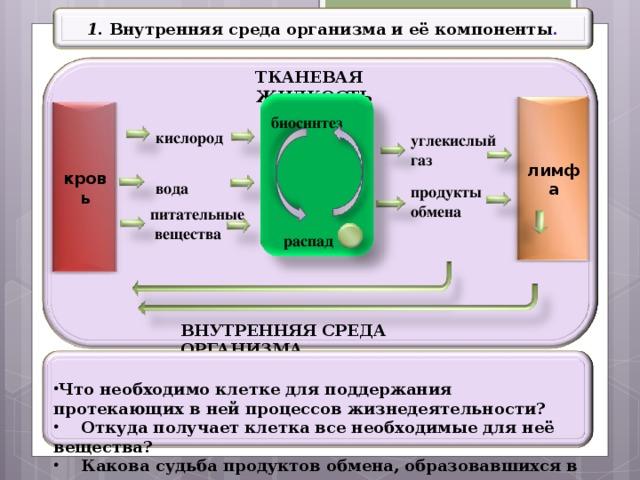 1 . Внутренняя среда организма и её компоненты . ТКАНЕВАЯ ЖИДКОСТЬ лимфа кровь биосинтез кислород углекислый газ вода продукты обмена питательные  вещества распад ВНУТРЕННЯЯ СРЕДА ОРГАНИЗМА  Что необходимо клетке для поддержания протекающих в ней процессов жизнедеятельности?  Откуда получает клетка все необходимые для неё вещества?  Какова судьба продуктов обмена, образовавшихся в процессе  распада и биосинтеза?