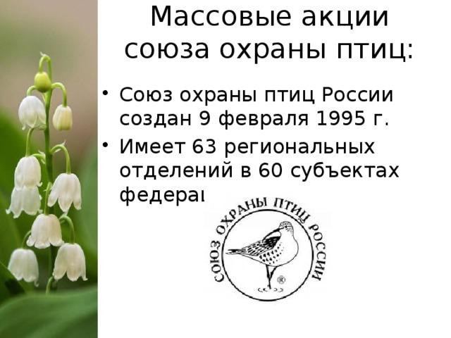 Массовые акции союза охраны птиц: