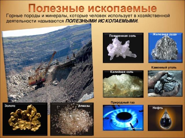Горные породы и минералы, которые человек использует в хозяйственной деятельности называются ПОЛЕЗНЫМИ ИСКОПАЕМЫМИ . Железная руда Поваренная соль Каменный уголь Калийная соль Природный газ Золото Алмазы Нефть