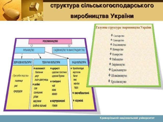 структура сільськогосподарського виробництва України Криворізький національний університет 13 13