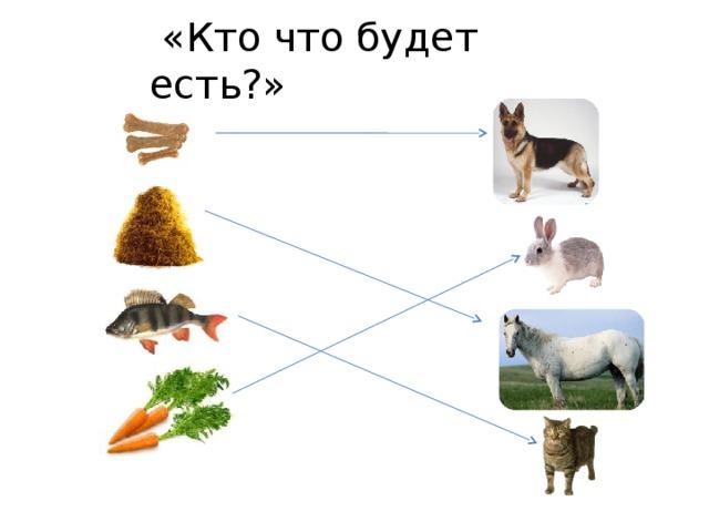 «Кто что будет есть?»