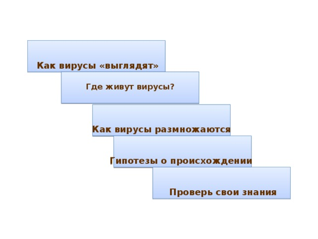 Как вирусы «выглядят» Где живут вирусы?  Как вирусы размножаются Гипотезы о происхождении  Проверь свои знания