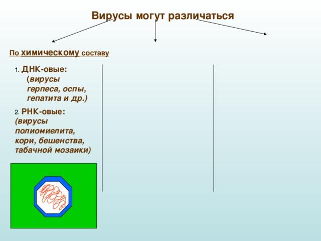 Вирусы могут различаться По химическому составу 1 . ДНК-овые: ( вирусы герпеса, оспы, гепатита и др.)  2 . РНК-овые:  (вирусы полиомиелита, кори, бешенства, табачной мозаики)