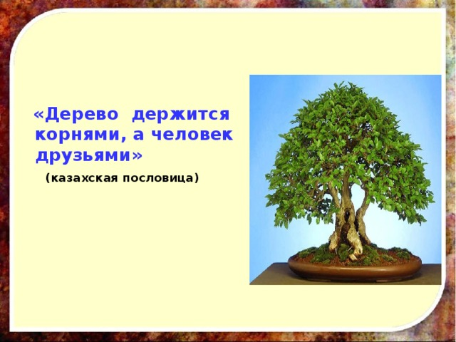 «Дерево держится корнями, а человек друзьями»  (казахская пословица)