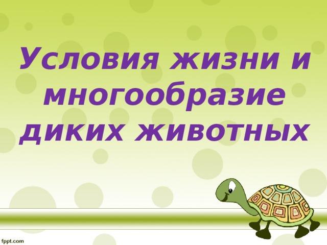 Условия жизни и многообразие диких животных