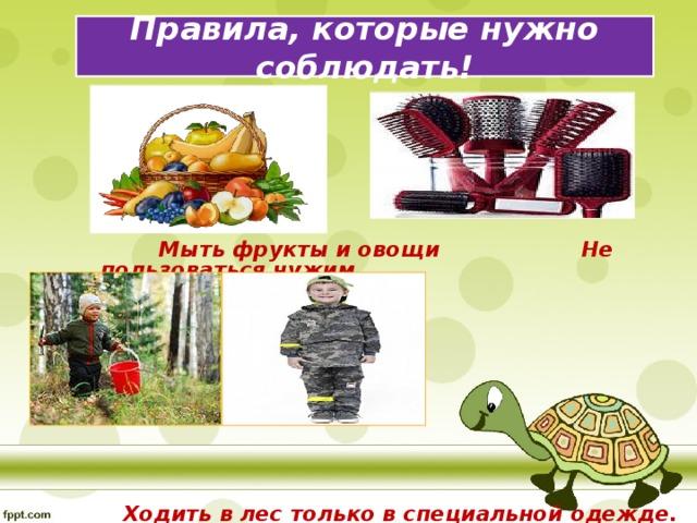 Правила, которые нужно соблюдать!  Мыть фрукты и овощи  Не пользоваться чужим  расческами  Ходить в лес только в специальной одежде.  После посещения леса внимательно осмотреть себя.