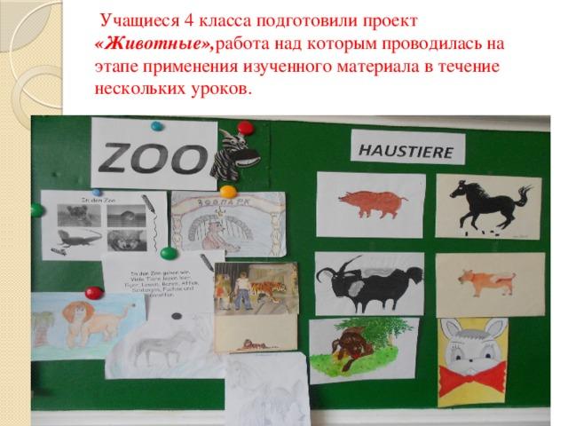 Учащиеся 4 класса подготовили проект «Животные», работа над которым проводилась на этапе применения изученного материала в течение нескольких уроков.