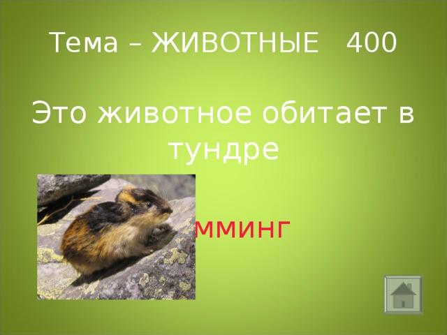 Тема – ЖИВОТНЫЕ 400 Это животное обитает в тундре  лемминг