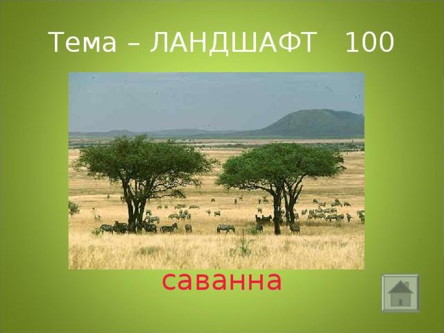 Тема – ЛАНДШАФТ 100 саванна