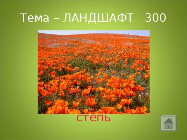 Тема – ЛАНДШАФТ 300 степь